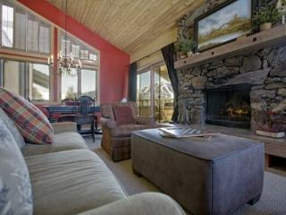 Wildflower Penthouse with Baldy Views - Central Idaho vacation rentals