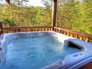 GREAT LOCATION-1 Mile Off Pkwy; 3 King Suites Jacuzzis - Pigeon Forge vacation rentals