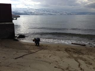 FAMILY FRIENDLY suite WALK TO BEACH - British Columbia Mountains vacation rentals