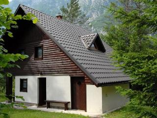 Apartment house with 2 apartments near Lake Bohinj - Bohinjsko Jezero vacation rentals
