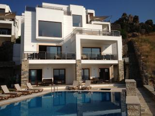 Carpe Diem, breathtaking seaview property, Gündoğan - Gundogan vacation rentals