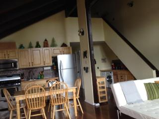 Fully Remodeled ~ Pet Friendly ~ Minutes From Ski - Stateline vacation rentals