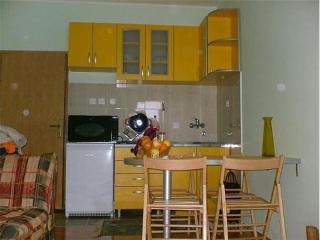Apartman na Zlatiboru (mountain Zlatibor apartment) - Zlatibor vacation rentals