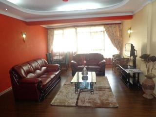 Nairobi,Westlands fully furnished and serviced apartments - Thika vacation rentals
