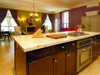 Large Suite in Grand Victorian Little Italy Dwtn - Toronto vacation rentals