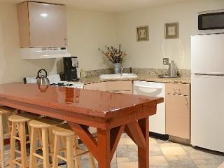 CAPITOL HILL: LARGE URBAN/LUXE STUDIO Sleeps 1-4 - Washington DC vacation rentals