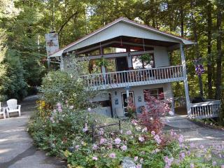 The 4 C's-Charm, Comfortable, Convenient, & Chic! - Sylva vacation rentals