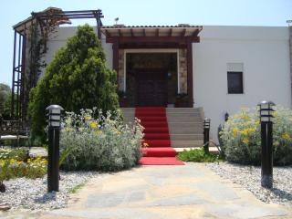 MAGNIFICIENT ' SMG VILLA '  in GUMUSLUK, BODRUM - Kozakli vacation rentals