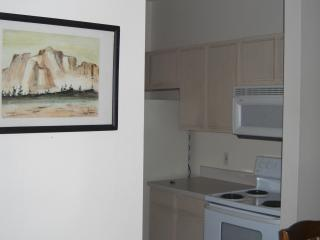 Beautiful Condo with Internet Access and Parking - Clearwater vacation rentals