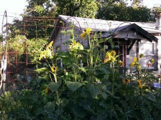 Camp Kenwood - Near Wineries | Dog Friendly - Kenwood vacation rentals