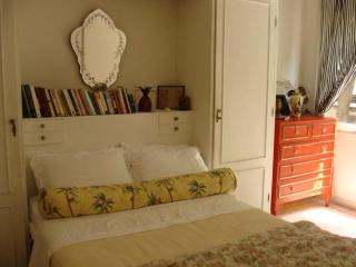 Charming 1 bedroom apartament in Ipanema! - State of Mato Grosso vacation rentals