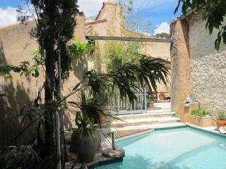 Comfortable 4 bedroom Montpeyroux House with Internet Access - Montpeyroux vacation rentals