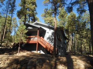 Cabin In The Pines - 3+ Acres near Skiing & Hiking - Northern Arizona and Canyon Country vacation rentals