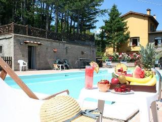 Anghiari - 65365001 - Anghiari vacation rentals