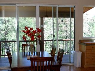 Beautiful House with DVD Player and Wireless Internet - Ruidoso vacation rentals