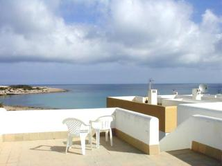 Nice Condo with Television and DVD Player - Port d'es Torrent vacation rentals