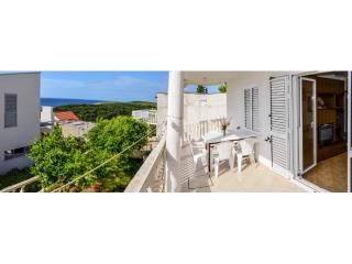 Apartments Zvonko - 43322-A1 - Island Vis vacation rentals