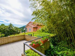 Apartments Mladen - 68921-A2 - Icici vacation rentals