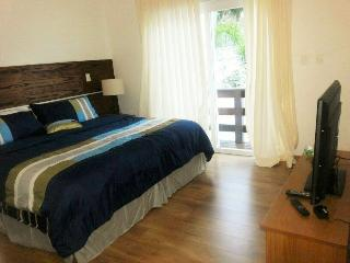 Beautiful 3 bedroom in Praia Mole - State of Acre vacation rentals