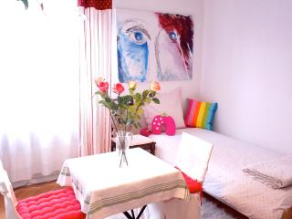 Nice and Central near to the Rail Station in Strasbourg/ FRANCE - Erstein vacation rentals