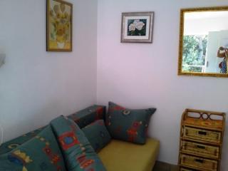 Apartments Elena - 44331-A2 - Island Vis vacation rentals