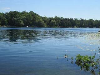Cullens Cove - Lake Ann vacation rentals