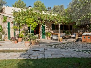 Beautiful Cottage in amazing surroundings - Valldemossa vacation rentals