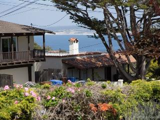 Monterey Getaway - Monterey vacation rentals
