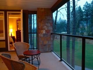 Bear Mountain Condo on the 9th - Victoria vacation rentals