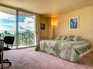 Apartment overlooking Wailoa Park - Hilo vacation rentals