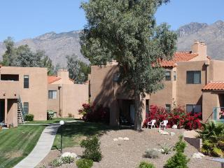 Amazing Mountain Views! Enjoy Resort style living! (MINIMUM 30 DAY STAY) - Tucson vacation rentals