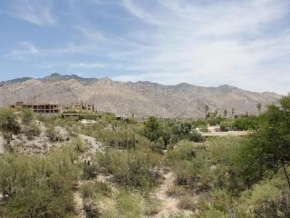 You will not find better mountain views in Tucson! - Tucson vacation rentals