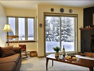 Cozy Wood Burning Fireplace - Gorgeous Mountain and Resort Views (6005) - Mont Tremblant vacation rentals
