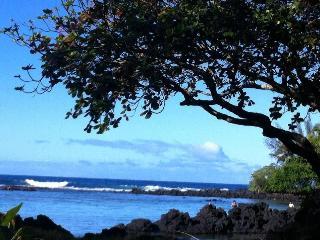 Ohana Retreat in Hawaii - Welches vacation rentals