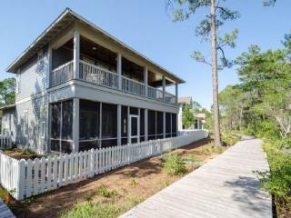 29 Sheepshank Lane - Watercolor vacation rentals