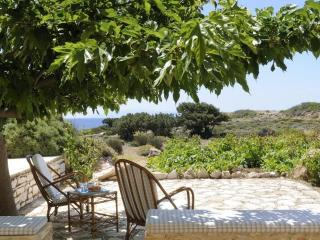 Nice Villa with Internet Access and Grill - Drios vacation rentals