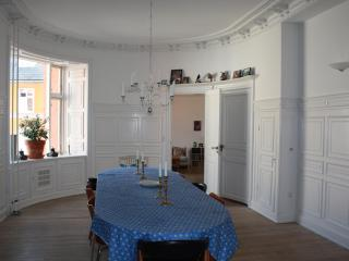 Big Charming Family-apartment - Copenhagen Region vacation rentals