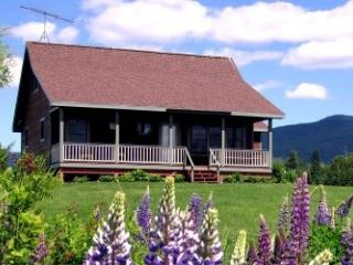 #101A Breathtaking sunsets over the lake right from your front porch! - Rockwood vacation rentals
