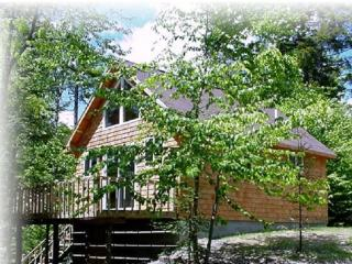 #124 Perfect camp with pebble beach - Maine Highlands vacation rentals