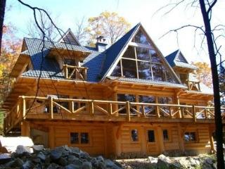 #136 Custom-built log lodge w/stone fireplace, outdoor hot tub & internet - Maine Highlands vacation rentals