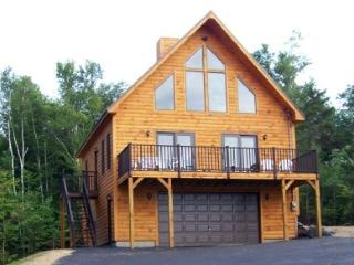 3 bedroom House with Central Heating in Greenville - Greenville vacation rentals