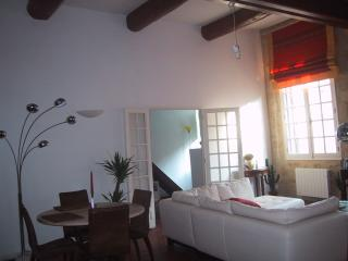 CHARMING HISTORICAL CENTER APPARTMENT : AIX en PROVENCE - Aix-en-Provence vacation rentals