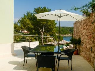 Apartments Miodrag - 44881-A1 - Milna vacation rentals
