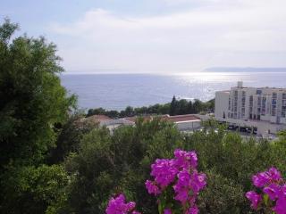 Apartments Zorica - 45341-A5 - Tucepi vacation rentals