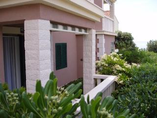 Apartments Mirjana - 45561-A1 - Island Vis vacation rentals
