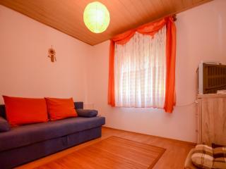 Apartment Alice - 75811-A1 - Novigrad vacation rentals