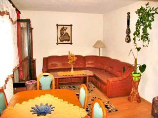 Apartments Ruža - 80671-A1 - Smoljanac vacation rentals