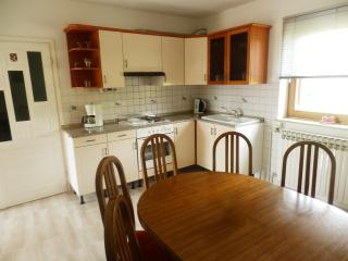 Apartment and Room Stipe - 81141-A1 - Drvenik vacation rentals