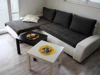Apartments Milica - 92631-A2 - Sutomore vacation rentals