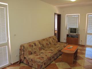 Apartments Ratka - 92651-A1 - Sutomore vacation rentals